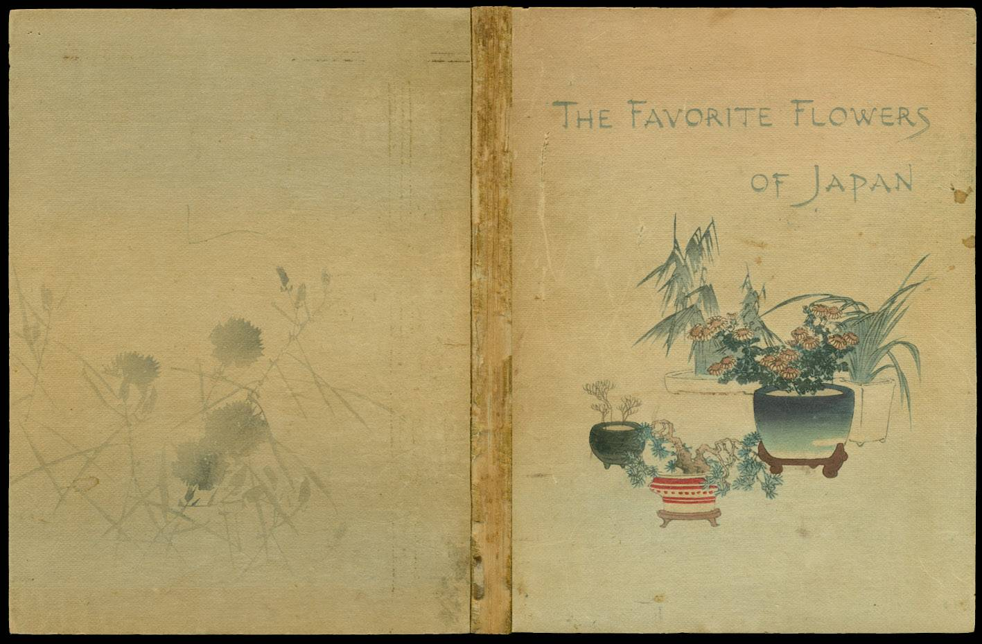 Book 1911101215c, The Favorite Flowers of Japan, Third Edition, 1911 ...
