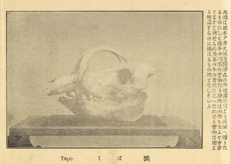 TIBETAN MYTHOLOGY